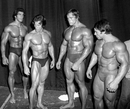 Arnold, Franco, Lou, Zane and Chiropractic